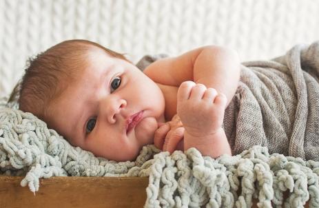 bertie-shady-newborn-42
