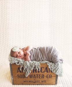bertie-shady-newborn-55